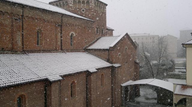 Basilica di San Pietro in Ciel d'Oro, nuovo chiostro